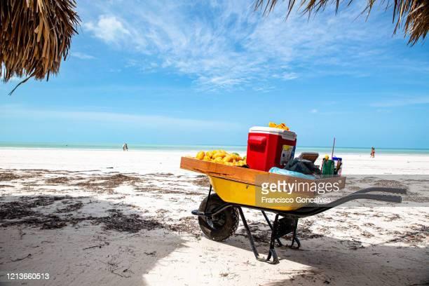paradisiac beach in holbox island, mexico - isla holbox fotografías e imágenes de stock