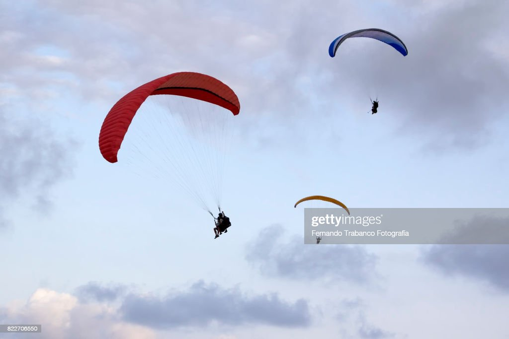 Paragliders : Stock Photo