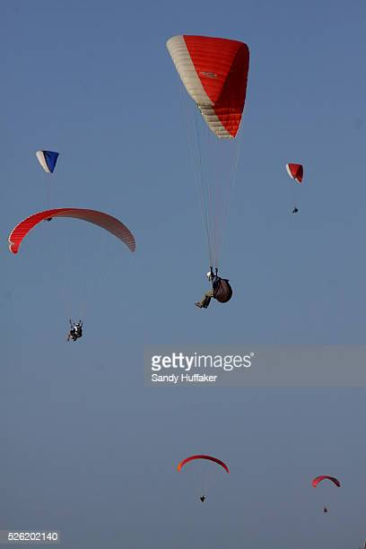 Paragliders sail above Torrey Pines State Park in La Jolla California near San Diego | Location La Lolla California USA