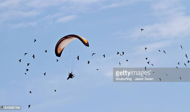 paragliding - s0ulsurfing stock pictures, royalty-free photos & images