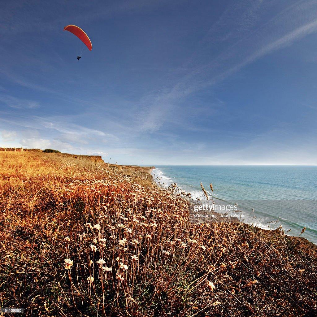 Paragliding : Stock Photo