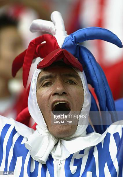 Paraguay fan enjoys himself during the FIFA World Cup Finals 2002 Group B match between Paraguay and South Africa played at the Asiad Main Stadium,...