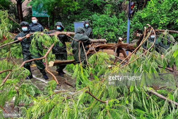 Paramilitary police officers clean up damaged trees and branches on road after Typhoon Higos approached in Shenzhen in China's southern Guangdong...