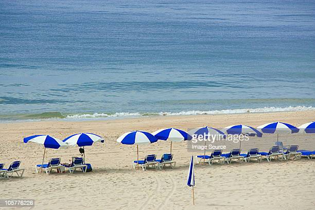 Parasols and sun loungers on beach, Montauk, Long Island