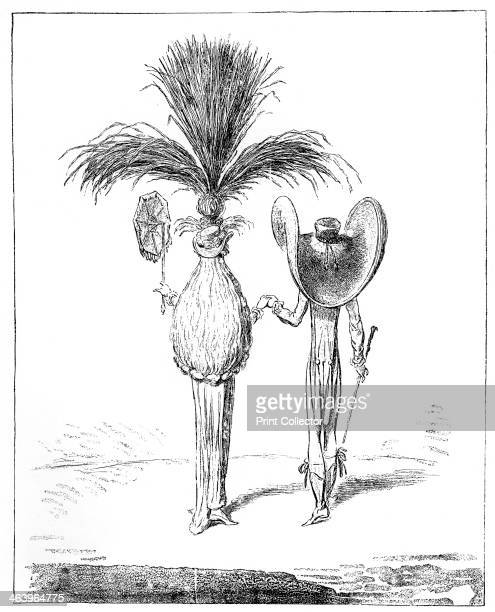 'Parasols for 1795' Illustration from Social Caricature in the Eighteenth Century With over two hundred illustrations by George Paston [pseudonym of...