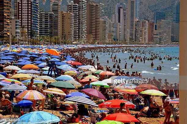 parasols in benidorm - benidorm foto e immagini stock