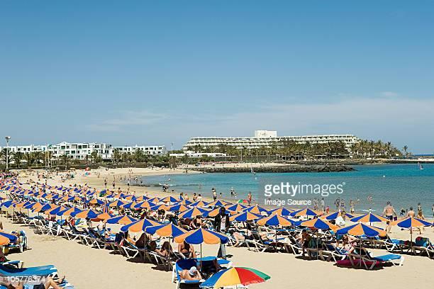 parasols on puerto del carmen beach , lanzarote - puerto del carmen stock pictures, royalty-free photos & images