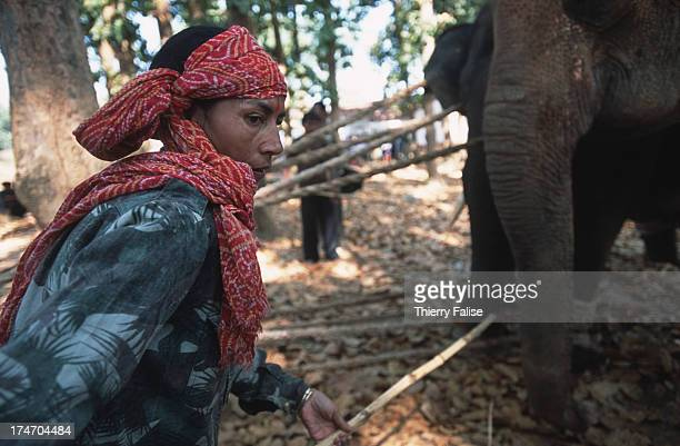 Parbati Barua as she starts the process of taming a captured wild elephant As a middleaged woman born in India's northeastern state of Assam Parbati...