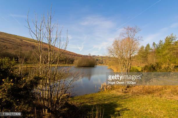 parc cwm darren lake - nigel owen stock pictures, royalty-free photos & images