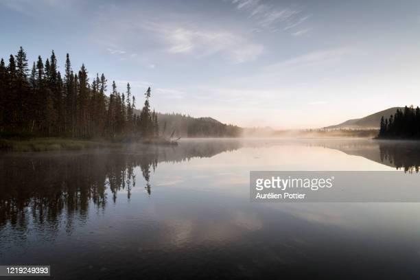 parc national de la gaspésie, petit lac cascapédia, dawn - gaspe peninsula stock pictures, royalty-free photos & images