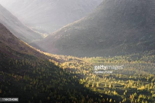 parc national de la gaspésie, vallée du diable, autumn - gaspe peninsula stock pictures, royalty-free photos & images