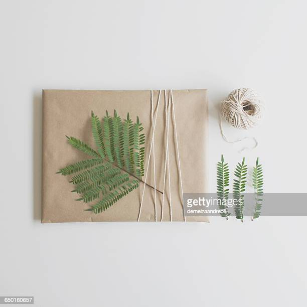 Parcel wrapped in brown paper and string decorated with fern leaf