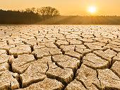 Parched cracked soil in landscape at sunrise