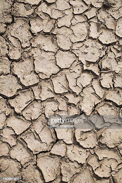 parched earth - loam stock photos and pictures