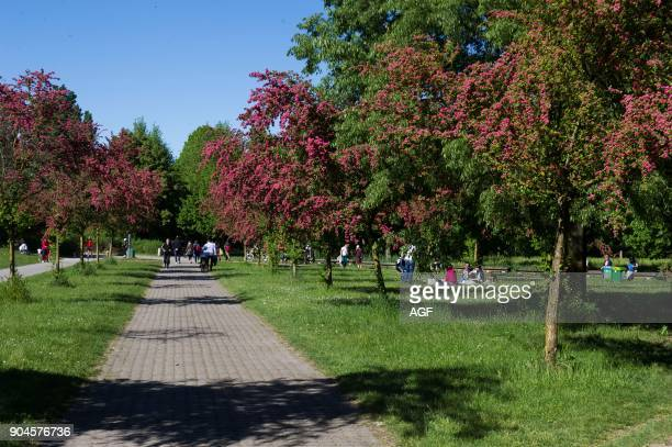 Parco Nord Milano Is A Metropolitan Suburban Park Located on The Northern Outskirts of Milan Classified As Regional It Stretches Between The Towns of...