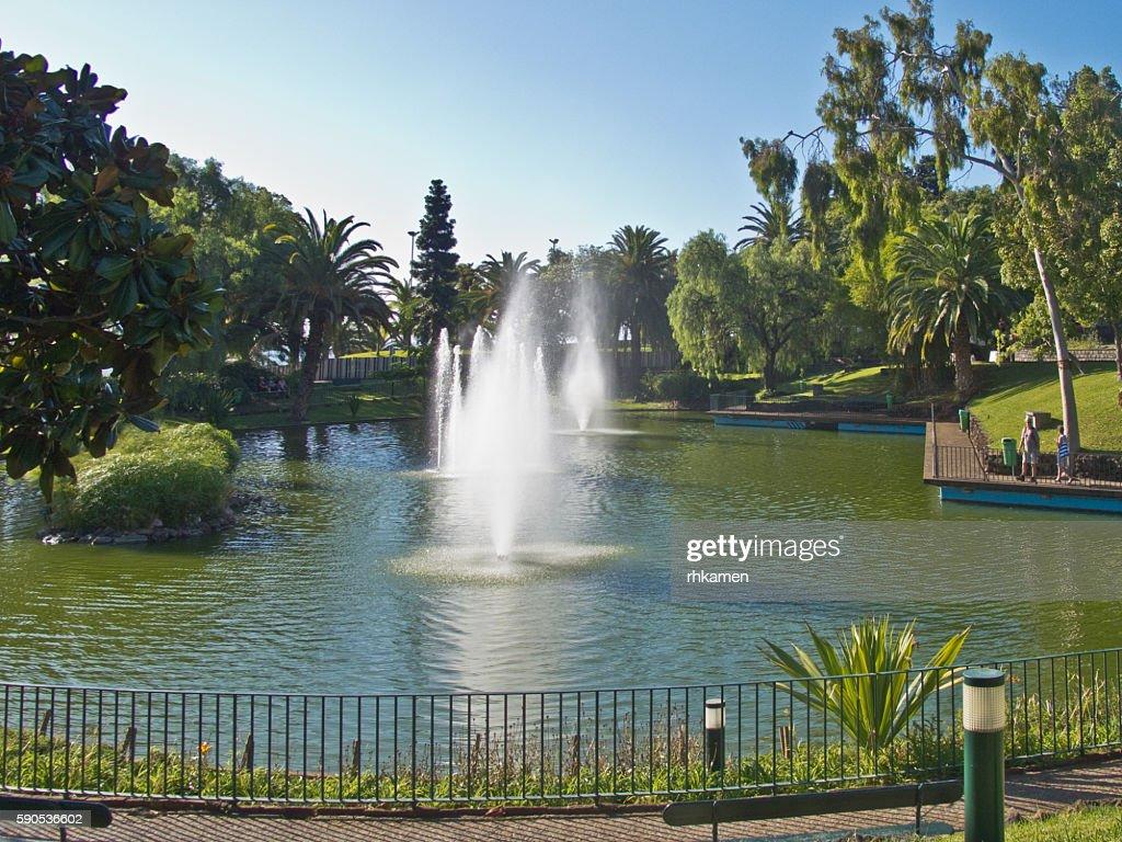 Parco Santa Caterina, Funchal, Madeira, Portugal : Stock Photo