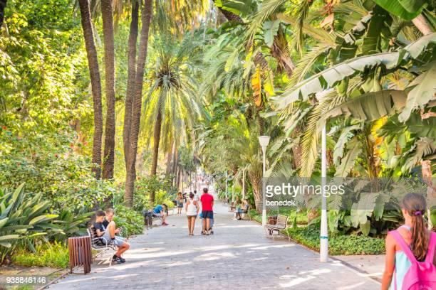 parc de la parcue de malaga dans le centre-ville de malaga espagne - malaga photos et images de collection