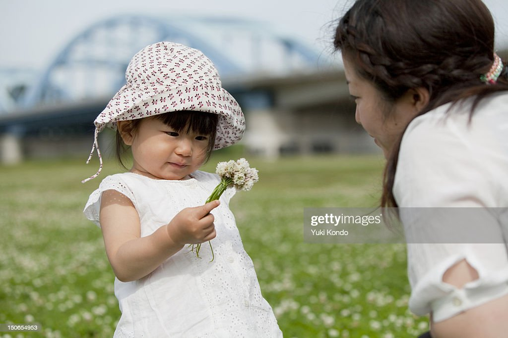 Parent and child who gather a flower. : Stock Photo