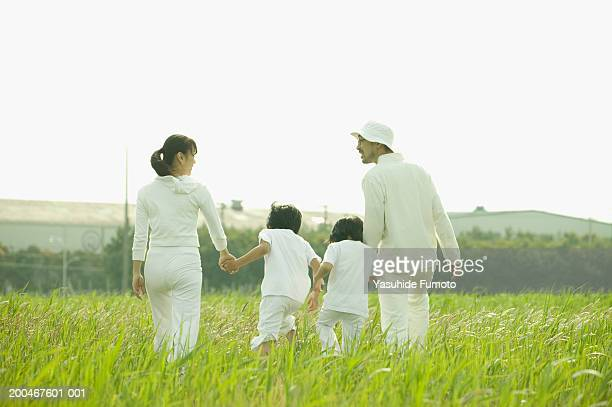 Parents and two children (8-10) walking through tall grass, rear view