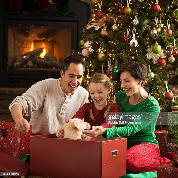 parents giving their daughter a puppy on christmas morning