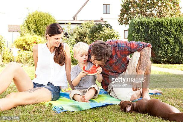 Parents sitting with their little son on a blanket in the garden eating watermelon