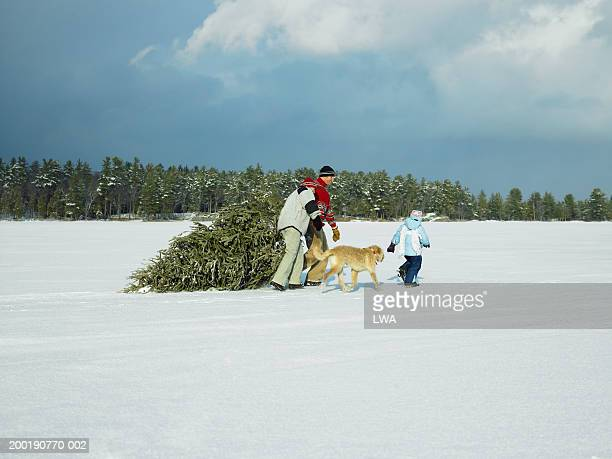 Parents with daughter (3-5) and dog hauling Christmas tree over snow