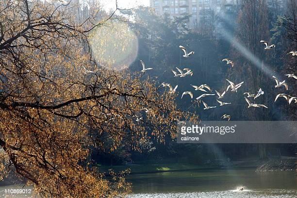 Paris, Buttes Chaumont