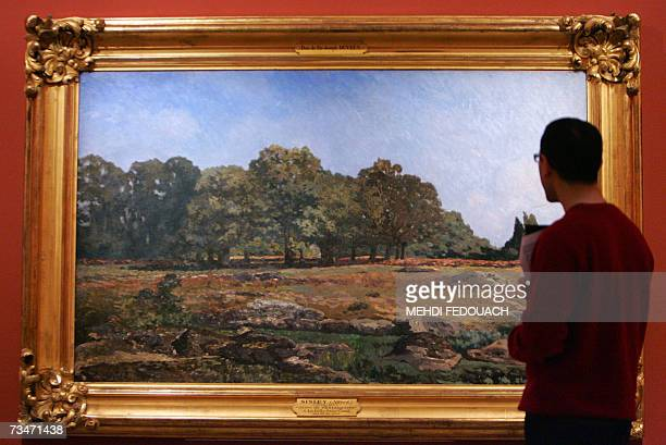 A visitor looks at 'Fontainebleau's Forest border' by Alfred Sisley during the exhibition 'The Forest of Fontainebleau' 02 March 2007 at Musee...