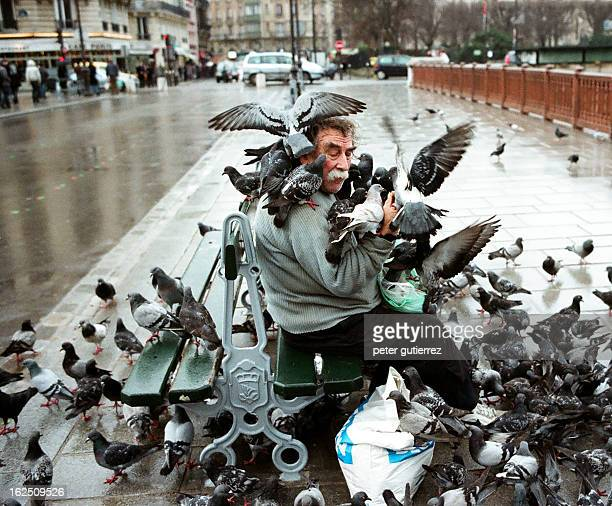 CONTENT] Paris France homeless man with big moustache sitting on a bench surrounded and completely covered by pigions