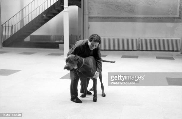Paris France Le couturier Azzedine ALAIA dans son atelier Ici jouant avec son dogue allemand