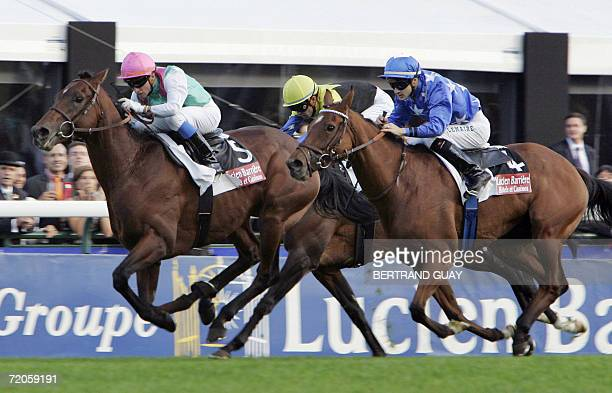 The horse Rail Link ridden by Stephane Pasquier competes with Pride ridden by PatriceChristophe Lemaire and Japanese Deep Impact driven by Yutaka...