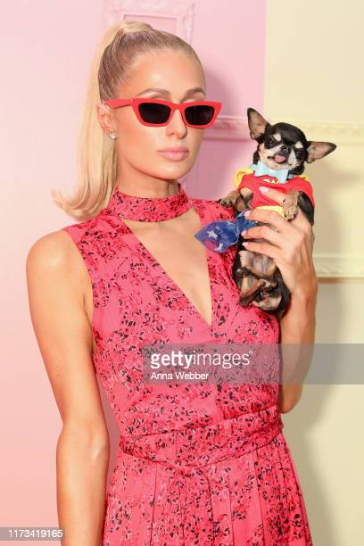 Paris Hilton attends the alice olivia by Stacey Bendet Spring 2020 Fashion Presentation at Root Studio on September 09 2019 in New York City