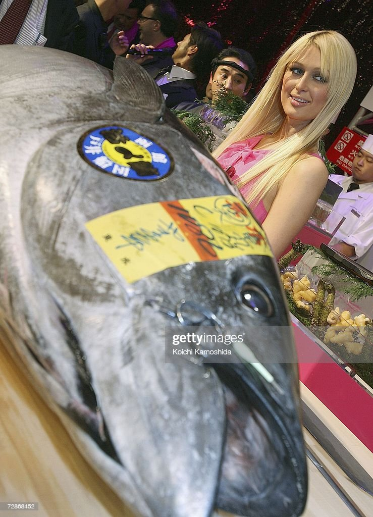 Paris Hilton poses in front of a big tuna fish during a mobile phone event at the Tsukiji Hongwanji Temple on December 22, 2006 in Tokyo, Japan.