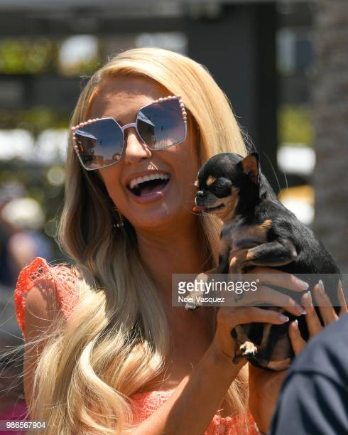 Paris Hilton poses with her dog at 'Extra' at Universal Studios Hollywood on June 28 2018 in Universal City California