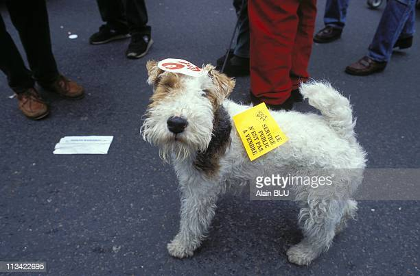 Paris Rally For The Cgt On May 1st 1995