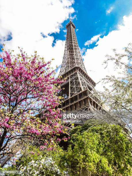 paris, romantique/paris, romantic - paris romantique stock pictures, royalty-free photos & images