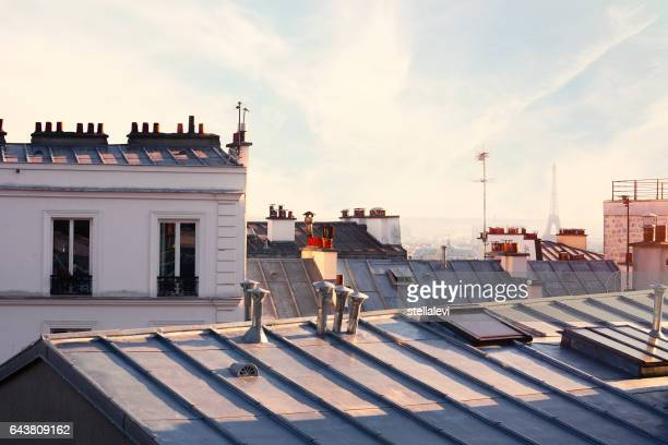 paris rooftops and eiffel tower - roof stock pictures, royalty-free photos & images