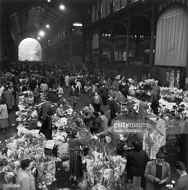 Paris The Halles In October 1955