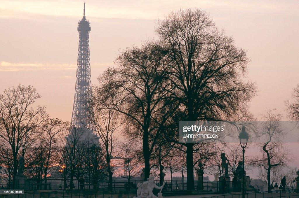 Jardin Des Tuileries En Arriere Plan La Tour Eiffel News Photo