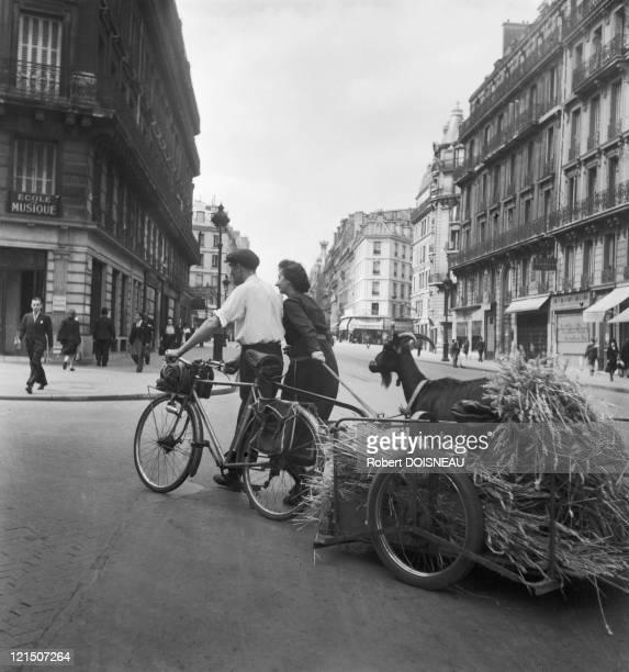 Paris Under Occupation, Rue De Rennes, July 1944