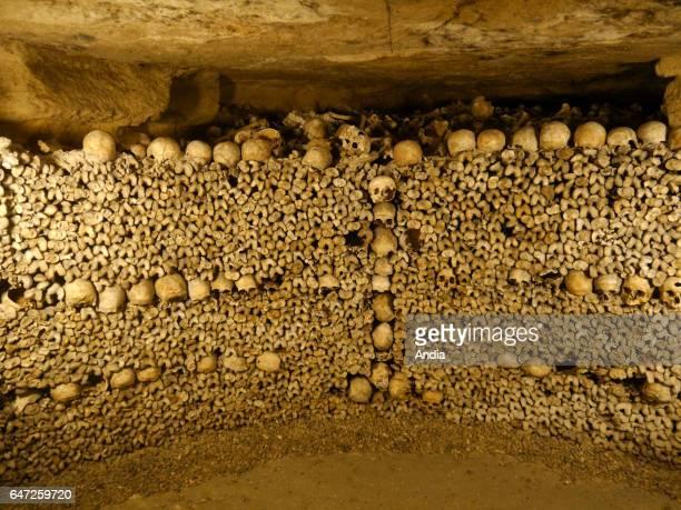 Paris Visit to the catacombs Bones and skulls