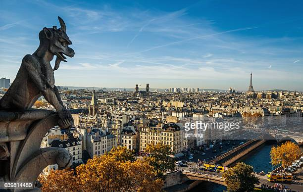 paris, wide city view from the roof of notre dame - notre dame de paris stock photos and pictures