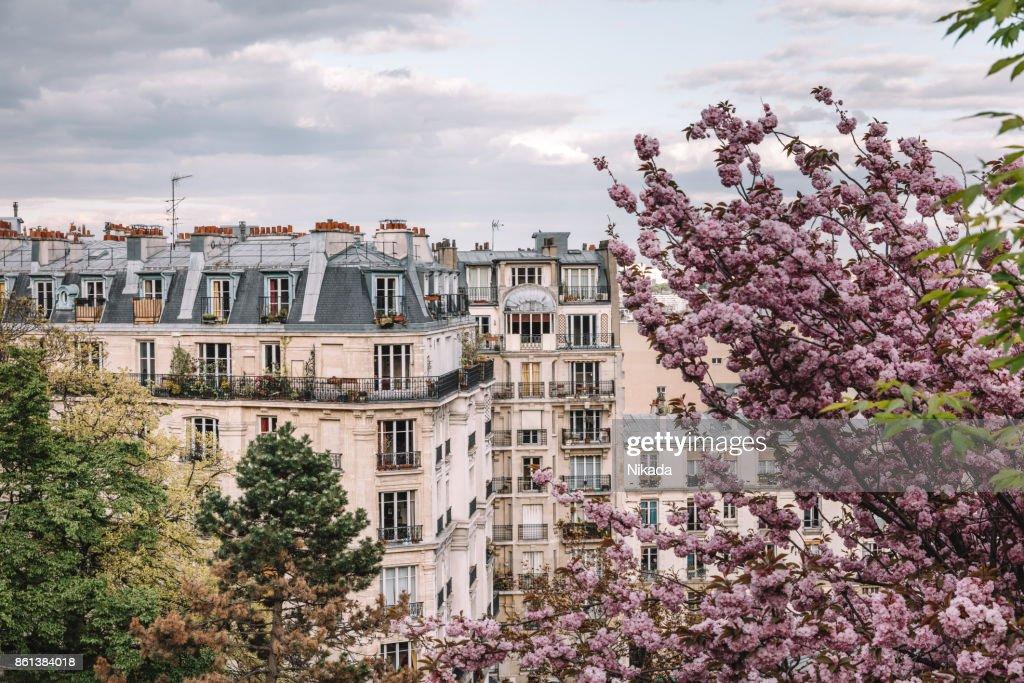 Parisian apartment building in spring : Stock Photo