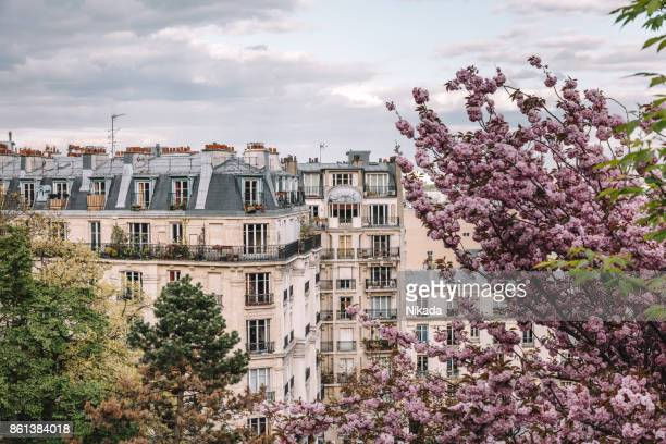 parisian apartment building in spring - france stock pictures, royalty-free photos & images