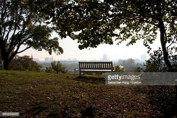 park bench amidst trees on sunny day - land brandebourg photos et images de collection