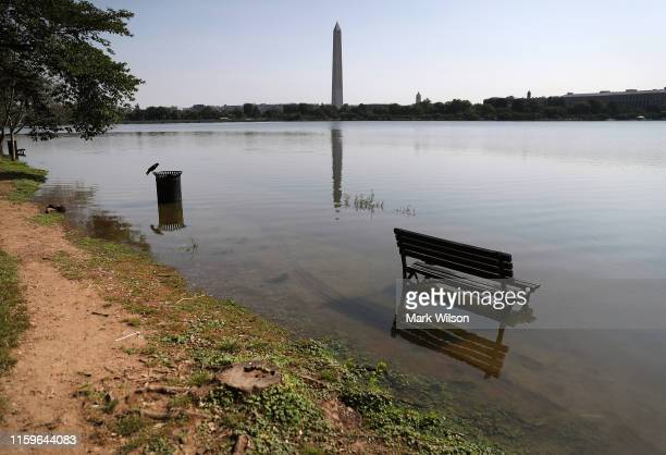 A park bench and sidewalk are flooded from the rising high tide on July 2 2019 in Washington DC The Tidal Basins crumbling seawall and sidewalks are...