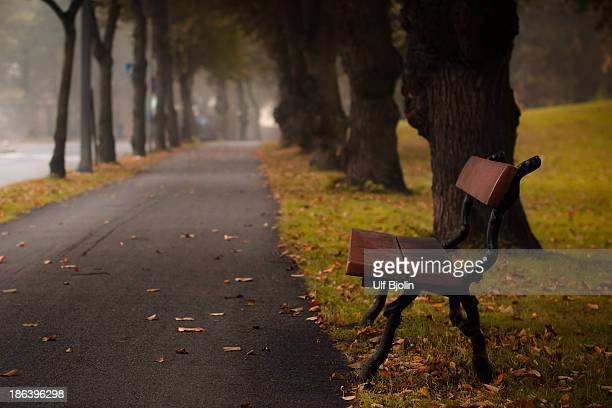 Park bench in autumn scene