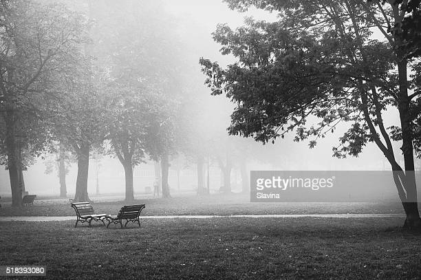 Park Bench In Black And White