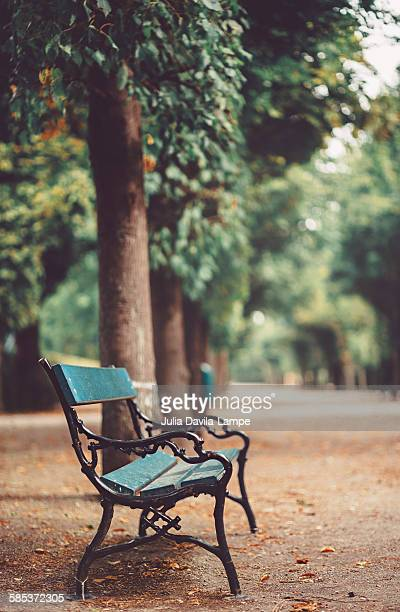 Park bench in fall