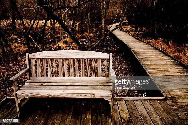 park bench in great swamp - chatham new york state stock pictures, royalty-free photos & images